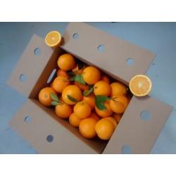Caja Naranjas de Zumo 12Kg