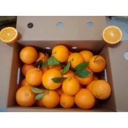 Caja de Naranjas Lane Late 13Kg