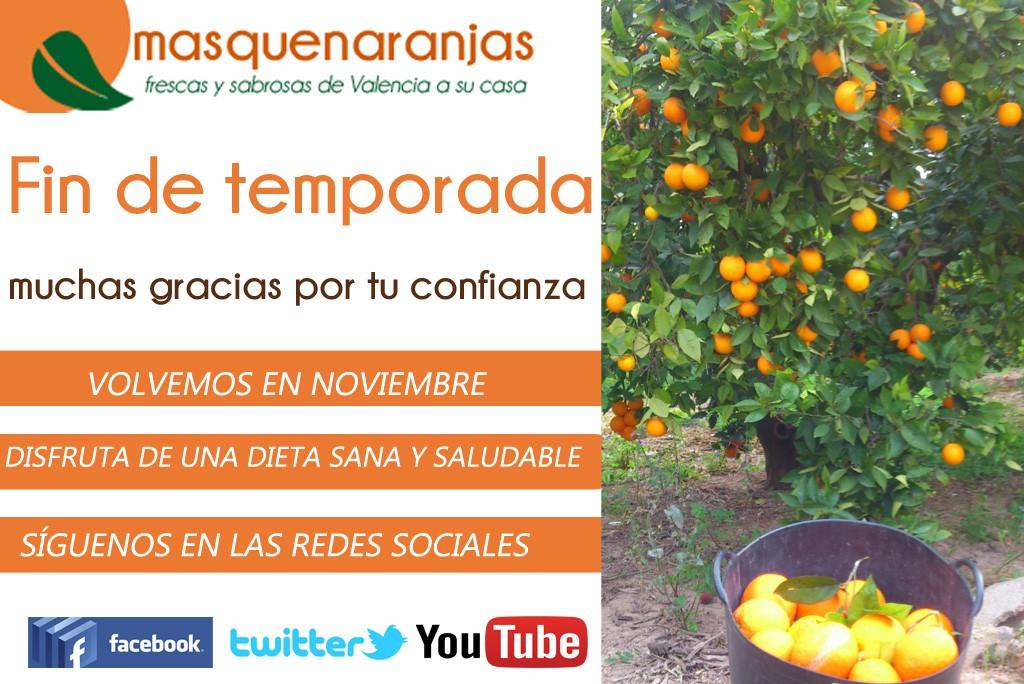 Naranjas de Valencia recién cogidas